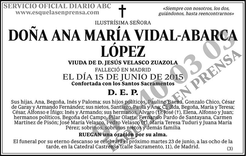 Ana María Vidal-Abarca López
